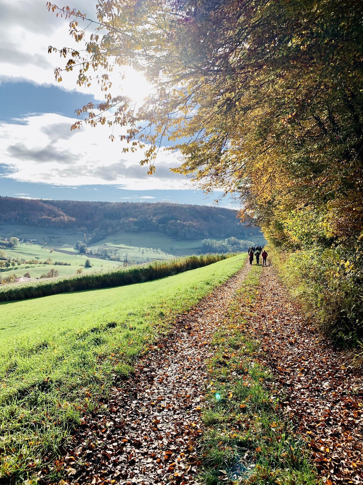 You are currently viewing Herbstwanderung